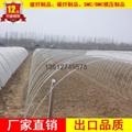 玻纖棒農業拱棚骨架 4