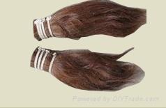 horse  hair 1