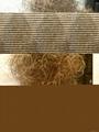 Curled Horse Hair 2