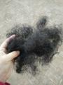 Curled Horse Hair 3