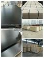建筑覆膜胶合板 1