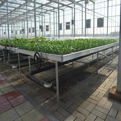 Rolling Wire Greenhouse Bench Grow Tray Ebb and Flow Table Systems