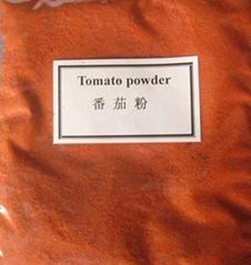 噴霧乾燥番茄粉