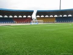 Artificial grass for football fields
