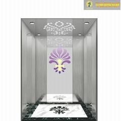 阿帕狮龙液压电梯不锈钢