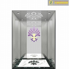 阿帕獅龍液壓電梯不鏽鋼