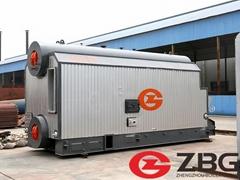 ZBG 20 ton steam boiler in Pakistan