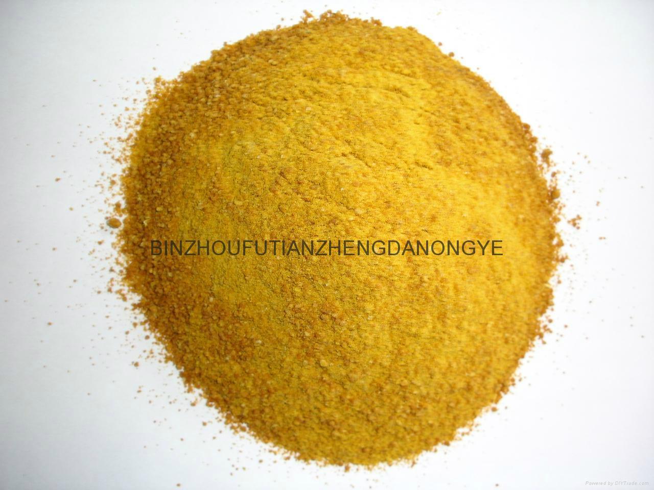 Powdery corn Gluten meal 1
