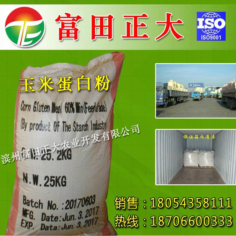 Powdery corn Gluten meal for exports 3