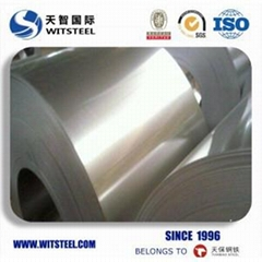 Witsteel Galvanized Steel Coil with Competitive Price