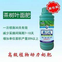 進口施力龍茶樹專用葉面肥