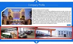 Hunan World Scaffolding Co., Ltd.