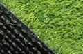 室外草坪 婚礼地毯 走廊 屋顶
