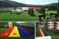 12生肖动物卡通仿真人造草坪 5