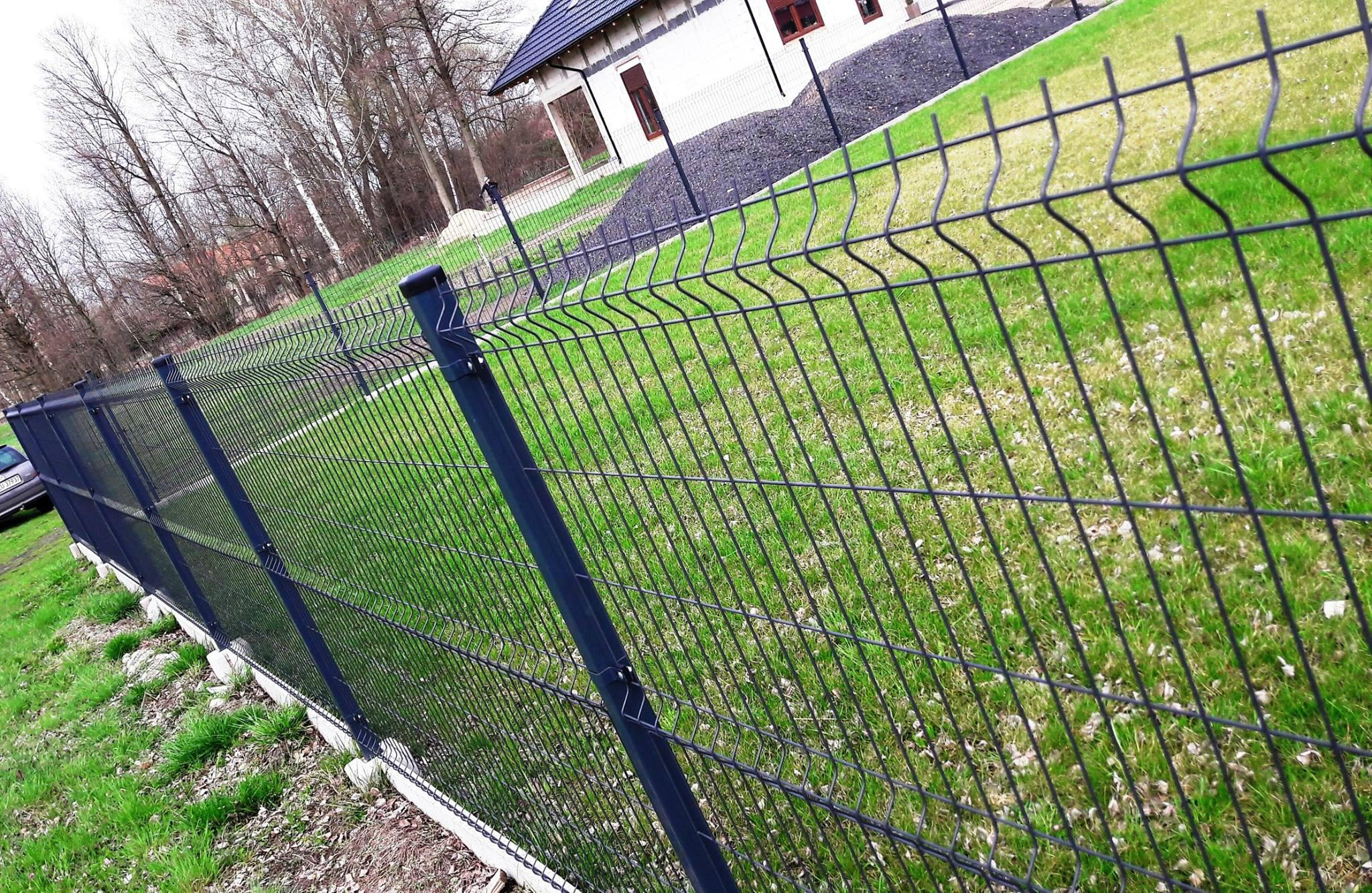 Welded Wire Mesh Fence 5