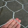 Hot Dipped Galvanized Hexagonal Gabion Box 3