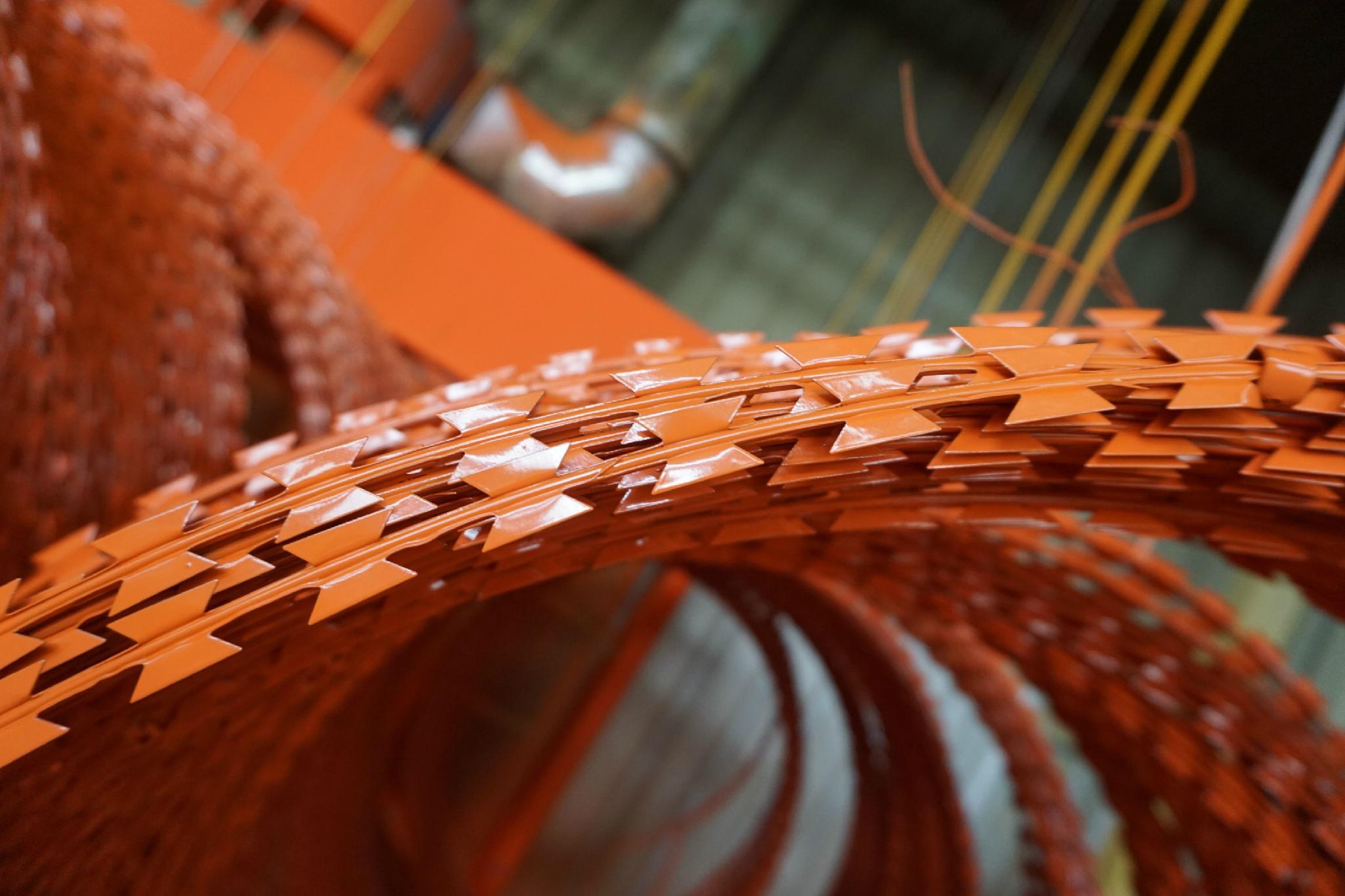 Hot Dipped Ga  anized Razor Barbed Wire 3
