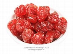 Dried Cherry Manufacturer