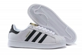 Adidas Superstar Shoes White/Black