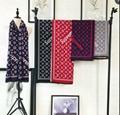 Louis Vuitton Supreme Scarves Women's Scarf Shawl