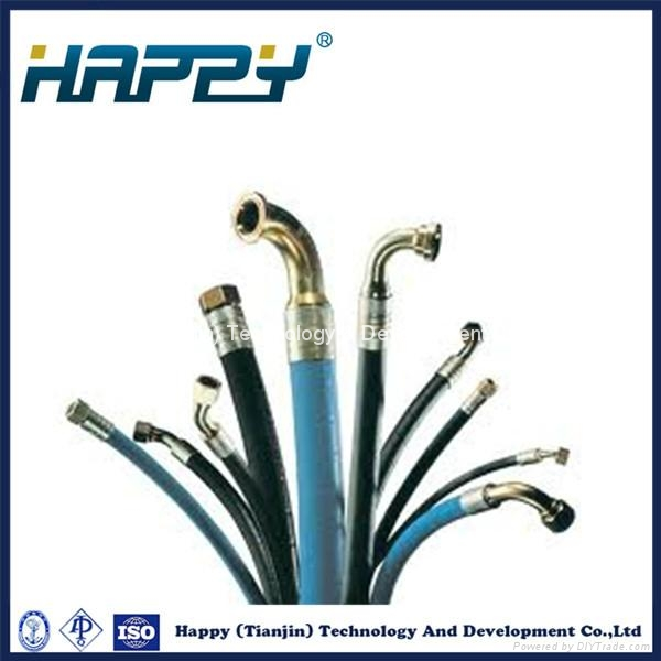 Chinese Hydraulic Rubber Hose Assembly Pipe Fitting 1