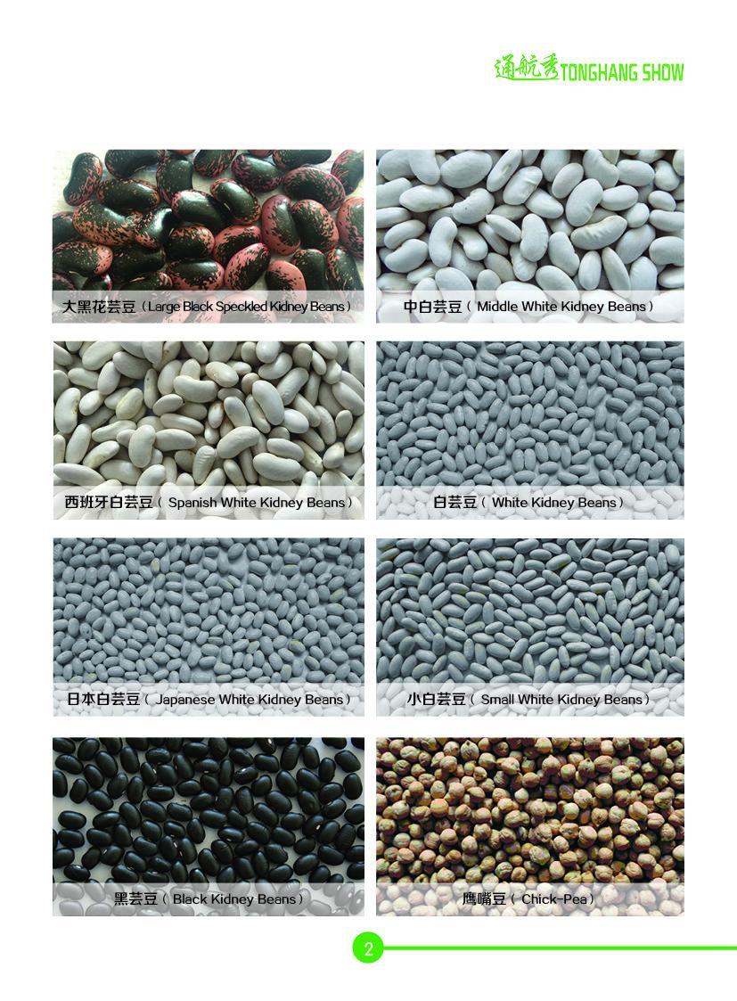 Beans Millets 1