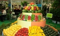 2018年 泰国国际农业机械展览会 4