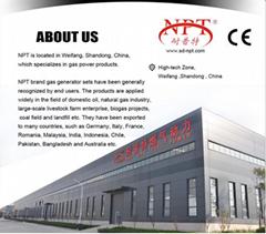 Weifang Naipute Gas Genset Co.,Ltd