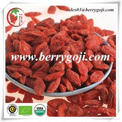 Dried Goji Berry(Conventional Goji Berries)