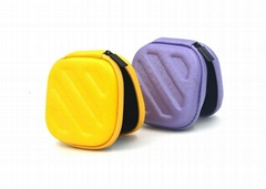Carrying Case for earphone