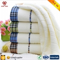 China Factory Wholesale 100% cotton hotel towel with factory price 3