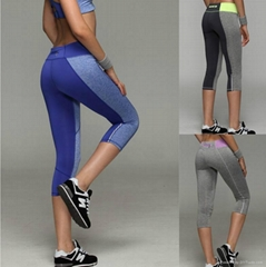 Woman Fitness Sports Training Shorts Dry  Stretchable  Sexy yoga Pants