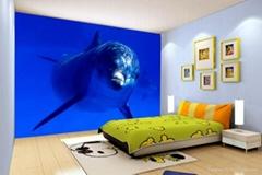 3D/5D立体效果装饰墙创业