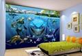 3D/5D立体效果装饰墙创业    3