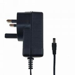 24V0.8A电源适配器 移动电源适配器