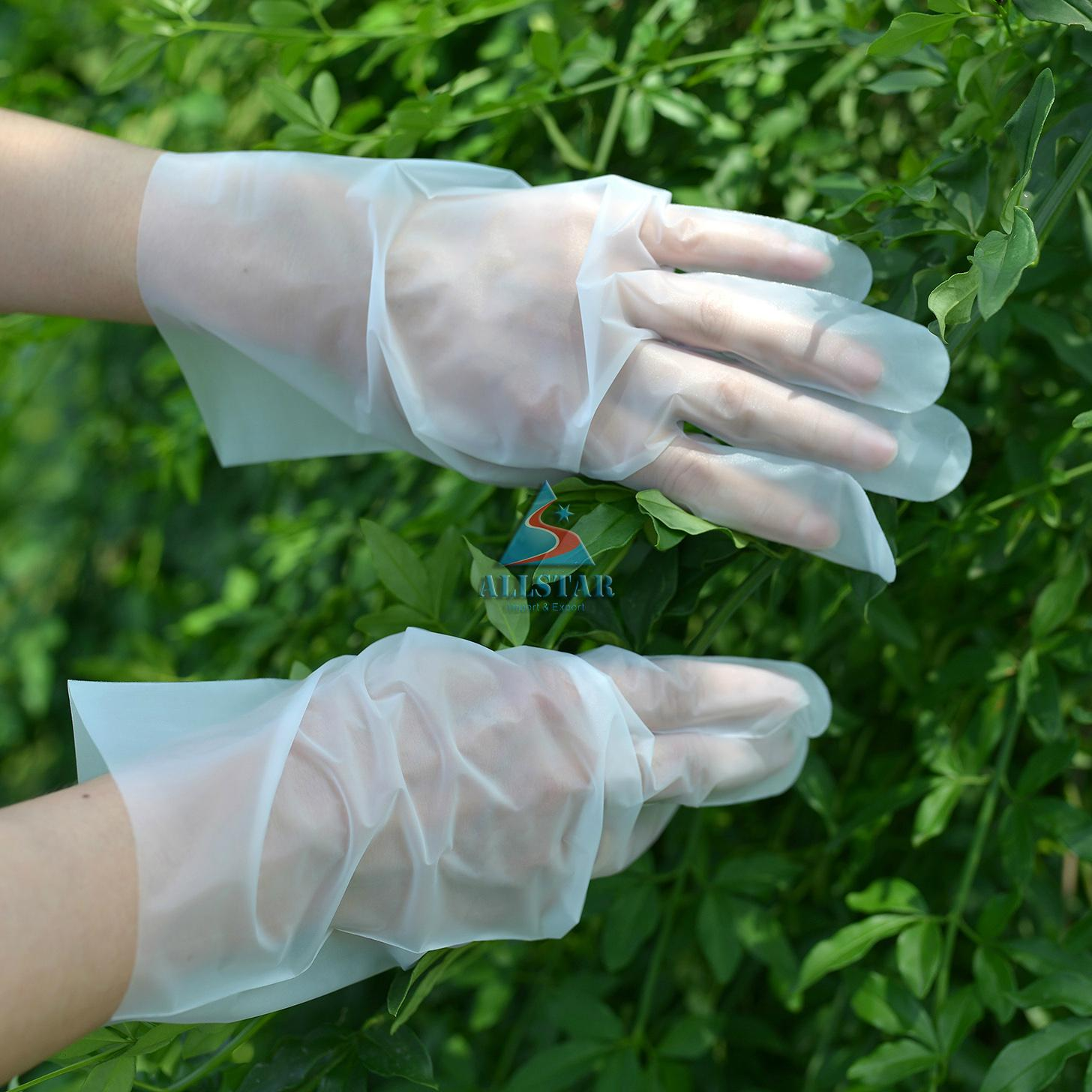 CPE disposable Gloves 1