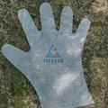 TPE  Gloves 4