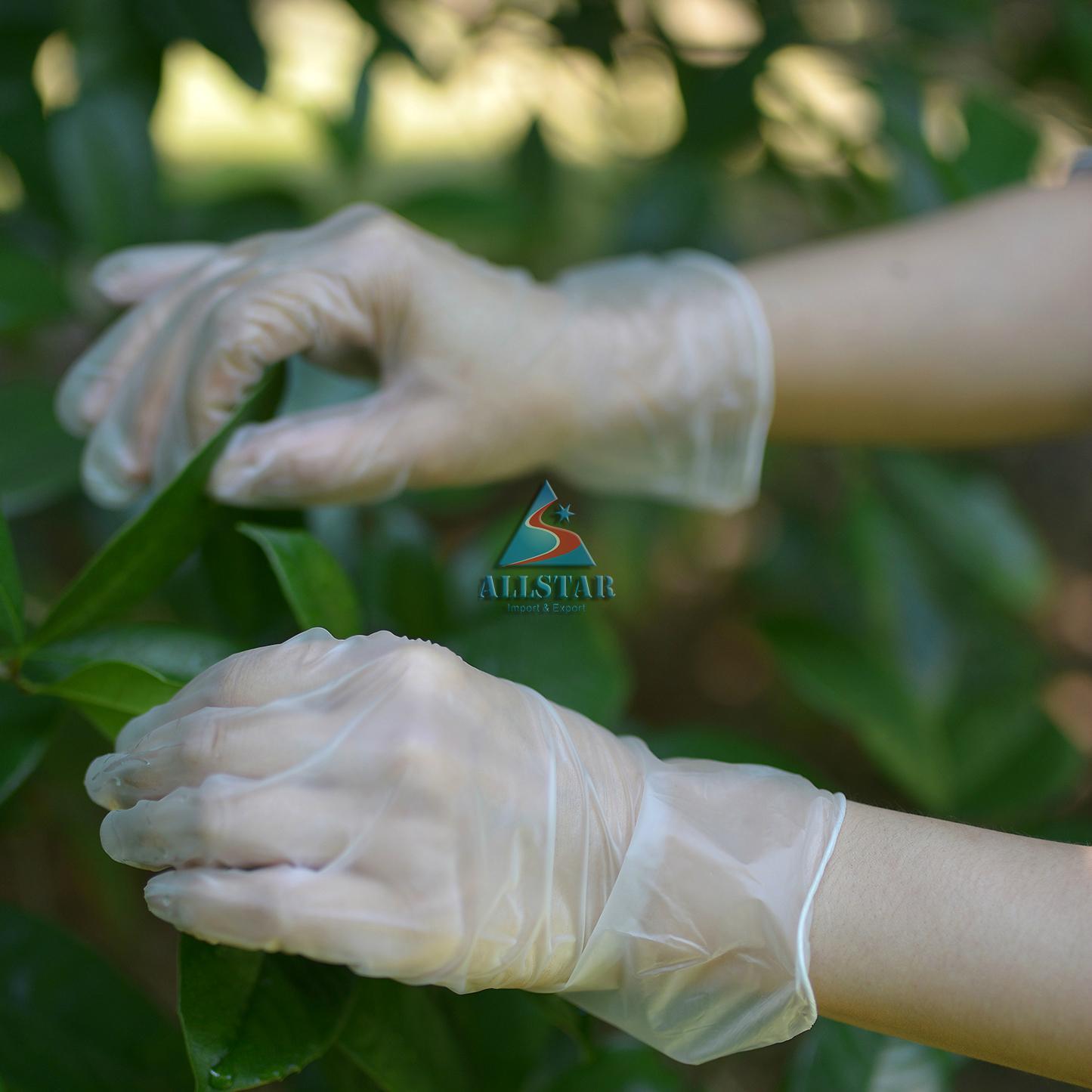 PVC Glove 2