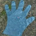 LDPE Gloves 3