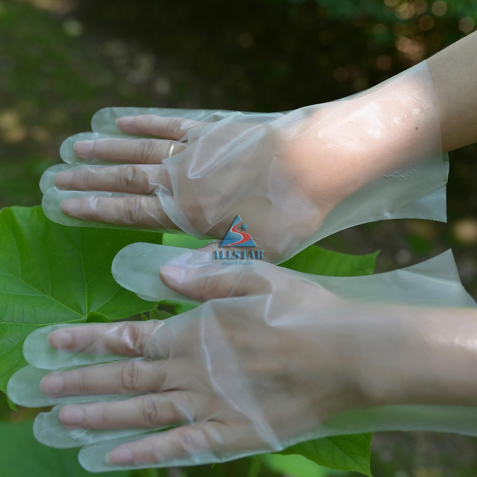 CPE  plastic gloves 2
