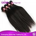 Prices For Straight Brazilian Hair Bulk 4