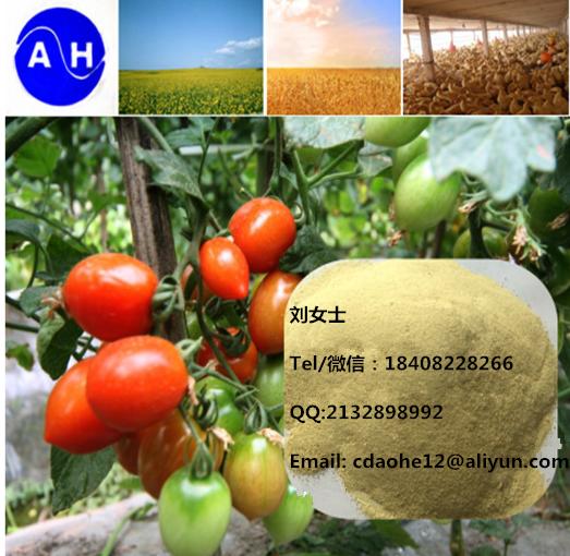 Agriculture Organic Fertilizer Fe Amino Acid Chelate Iron