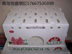 厂家直销定制中空板蔬菜箱