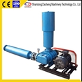 DSR125 Hot-Selling High Efficiency Vacuum Roots Blower for Fish Care 1