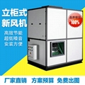 邵阳食品厂柜式新风机