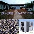 空气能油茶籽烘干机