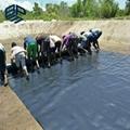 fish farm pond liner hdpe membrane price 4