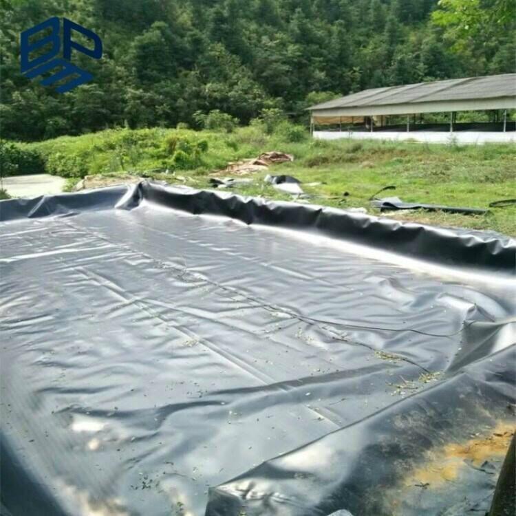 fish farm pond liner hdpe membrane price 3