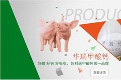 山东饲料级甲酸钙厂家直供预防仔猪腹泻
