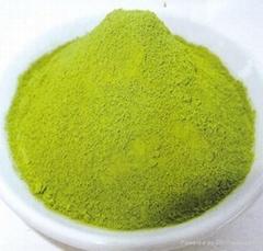 Matcha / Japanese Green Tea Powder SP- 525